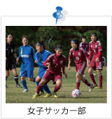創部4年目を迎えた女子サッカー部は、すでに2度の全日本大学女子サッカー選手権(インカレ)出場を果たしました。現在は全国大会での1勝を目標に、19名のメンバーで切磋琢磨しています。年々レベルの高い新入生を迎え、高いモチベーションで練習に取り組んでいます。